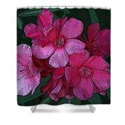 Oleanders In Pink Shower Curtain