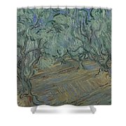 Olive Grove Saint Remy De Provence  June 1889 Vincent Van Gogh 1853  1890 Shower Curtain