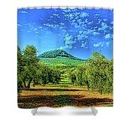 Olive Grove Spain Shower Curtain