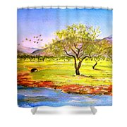 Olive Grove Shower Curtain