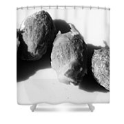 Olive Pips Shower Curtain