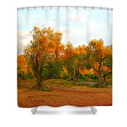 Olive Tree Forest Shower Curtain