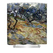 Olive Trees Shower Curtain