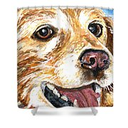 Oliver From Muttville Shower Curtain