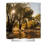 Oliver Sunbursts Shower Curtain