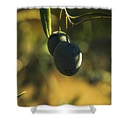 Olives #2 Shower Curtain