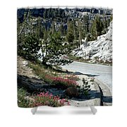 Olmsted Down The Road View Shower Curtain
