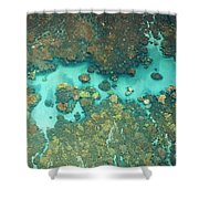 Olowalu Coral Shower Curtain