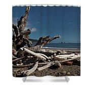 Olympic Peninsula Coast Shower Curtain