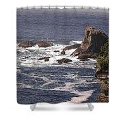 Olympic Peninsula Coastline Shower Curtain