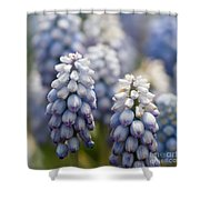 Ombre Blue - Square Shower Curtain