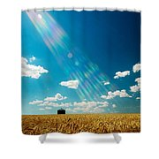 Omnipotent Shower Curtain