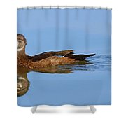On A Clear Day You Can See.....your Reflection Shower Curtain