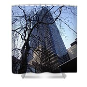 On A Clear Day...moma Courtyard Ny City Shower Curtain