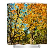 On A Country Road 5 - Paint Shower Curtain