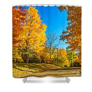 On A Country Road 6 Shower Curtain
