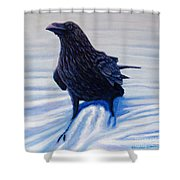 On Canyon Road Shower Curtain