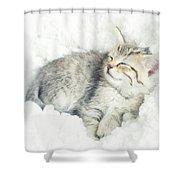 On Cloud Nine Shower Curtain