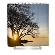 On Fire - Bright Sunrise Through The Willows Shower Curtain