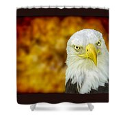 On Fire The American Bald Eagle Shower Curtain