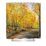 On Golden Road Shower Curtain