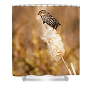 On Her Perch Shower Curtain