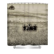 On The Battlefield - Gettysburg Shower Curtain