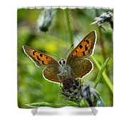 On The Beat Shower Curtain