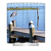 On The Dock Of The Bay Shower Curtain