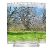 On The Edge Of A Dream Shower Curtain