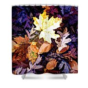 On The Forest Floor Vivid Colors Shower Curtain