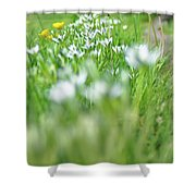 On The Garden Path Shower Curtain