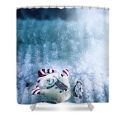 On The Ice Shower Curtain