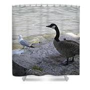 On The Lakefront Shower Curtain