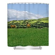 On The Look-out. Shower Curtain