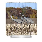 On The March . . . Shower Curtain