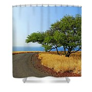On The Road To Lapakahi Shower Curtain