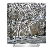 On The Road To Woods Hole Shower Curtain