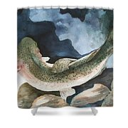 On The Rocks Shower Curtain