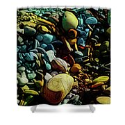 On The Shores Of My Imagination Shower Curtain