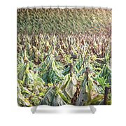 On The Stick Shower Curtain