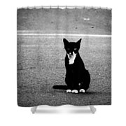 On The Streets Shower Curtain
