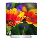 On The Sunny Side... Shower Curtain
