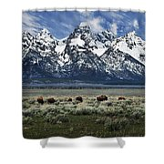 On To Greener Pastures Shower Curtain