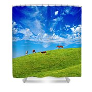 On Top Of The Hill Shower Curtain