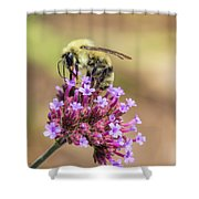 On Top Of The World - Bee Style Shower Curtain