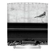 On Track Shower Curtain