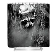 On Watch - Bw Shower Curtain