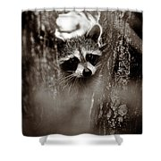 On Watch - Sepia Shower Curtain