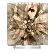 Once Upon Grandmom's Poinsettia Shower Curtain